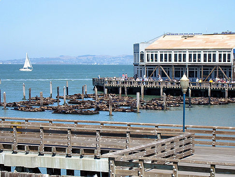 Fishermans Pier 39 bis 45 - Kalifornien (San Francisco)